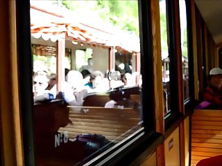 Girlfriend Travling And Flashing In Wooden Train Public